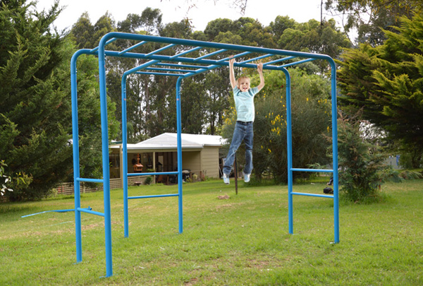 Fun Monkey Bars Playground Equipment